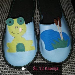 12 ksenija žaba_Rs